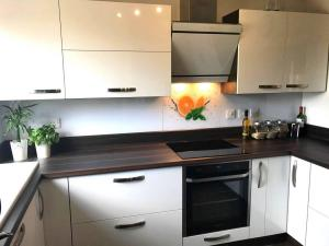 Acrylic White / Dark Brown Kitchen